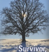 The Survivor, The Hero, The Angel, A mother's story - one decade